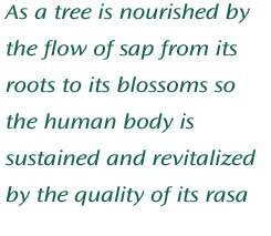 As a tree is nourished by the flow of sap from its roots to its blossoms so the human body is sustained and revitalized by the quality of its rasa